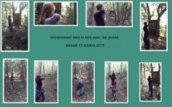 2018 10 13entraiement dans le bois